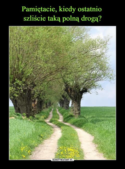 Pamiętacie, kiedy ostatnio  szliście taką polną drogą?