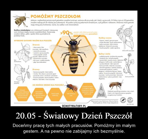 20.05 - Światowy Dzień Pszczół – Doceńmy pracę tych małych pracusiów. Pomóżmy im małym gestem. A na pewno nie zabijajmy ich bezmyślnie.