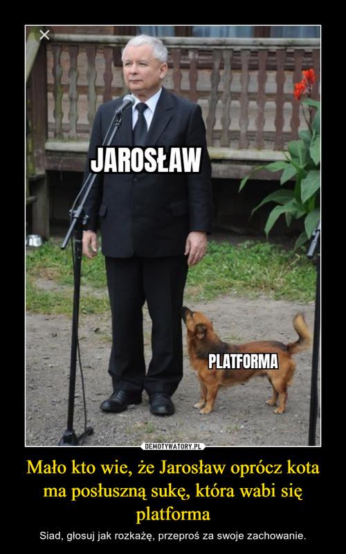 Mało kto wie, że Jarosław oprócz kota ma posłuszną sukę, która wabi się platforma
