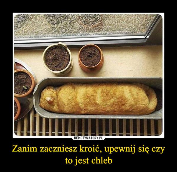 Zanim zaczniesz kroić, upewnij się czy to jest chleb –