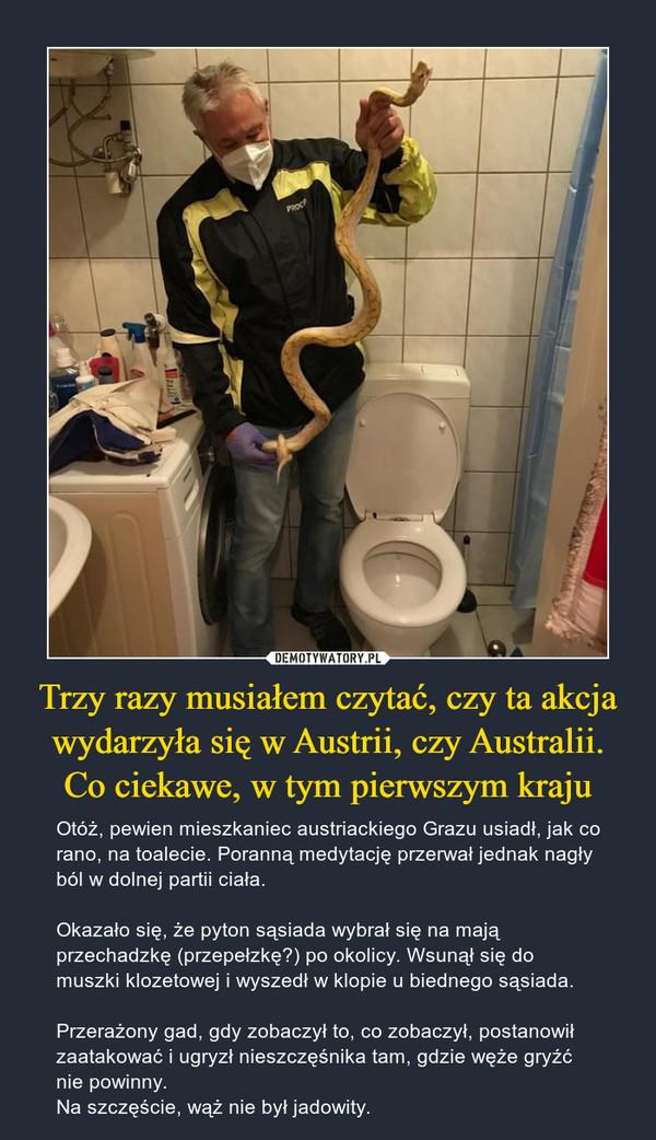 Trzy razy musiałem czytać, czy ta akcja wydarzyła się w Austrii, czy Australii. Co ciekawe, w tym pierwszym kraju – Otóż, pewien mieszkaniec austriackiego Grazu usiadł, jak co rano, na toalecie. Poranną medytację przerwał jednak nagły ból w dolnej partii ciała. Okazało się, że pyton sąsiada wybrał się na mają przechadzkę (przepełzkę?) po okolicy. Wsunął się do muszki klozetowej i wyszedł w klopie u biednego sąsiada. Przerażony gad, gdy zobaczył to, co zobaczył, postanowił zaatakować i ugryzł nieszczęśnika tam, gdzie węże gryźć nie powinny. Na szczęście, wąż nie był jadowity.