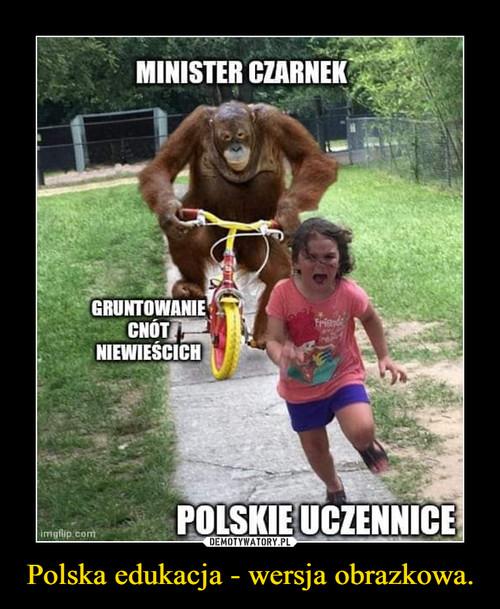 Polska edukacja - wersja obrazkowa.
