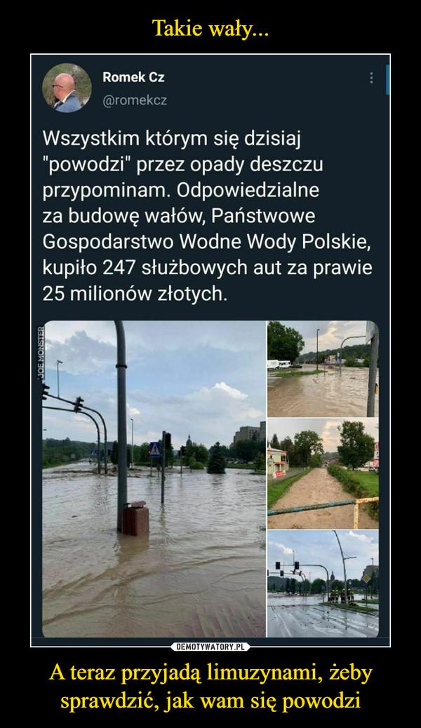 A teraz przyjadą limuzynami, żeby sprawdzić, jak wam się powodzi –