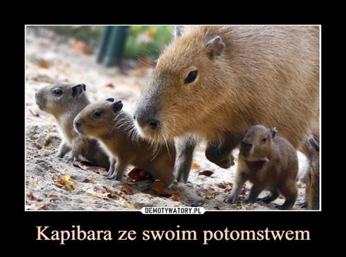 Kapibara ze swoim potomstwem