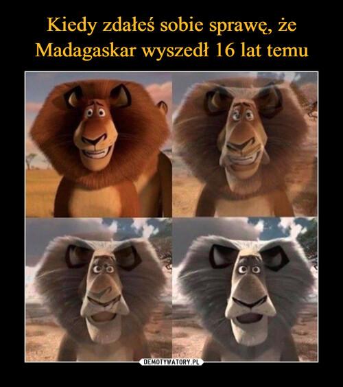 Kiedy zdałeś sobie sprawę, że Madagaskar wyszedł 16 lat temu
