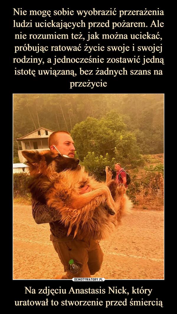 Na zdjęciu Anastasis Nick, który uratował to stworzenie przed śmiercią –