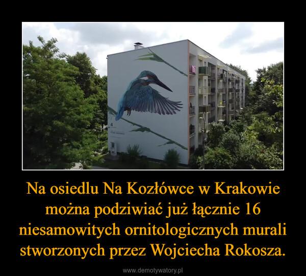 Na osiedlu Na Kozłówce w Krakowie można podziwiać już łącznie 16 niesamowitych ornitologicznych murali stworzonych przez Wojciecha Rokosza. –