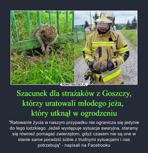 """Szacunek dla strażaków z Goszczy, którzy uratowali młodego jeża, który utknął w ogrodzeniu – """"Ratowanie życia w naszym przypadku nie ogranicza się jedynie do tego ludzkiego. Jeżeli występuje sytuacja awaryjna, staramy się również pomagać zwierzętom, gdyż czasem nie są one w stanie same poradzić sobie z trudnymi sytuacjami i nas potrzebują"""" - napisali na Facebooku"""