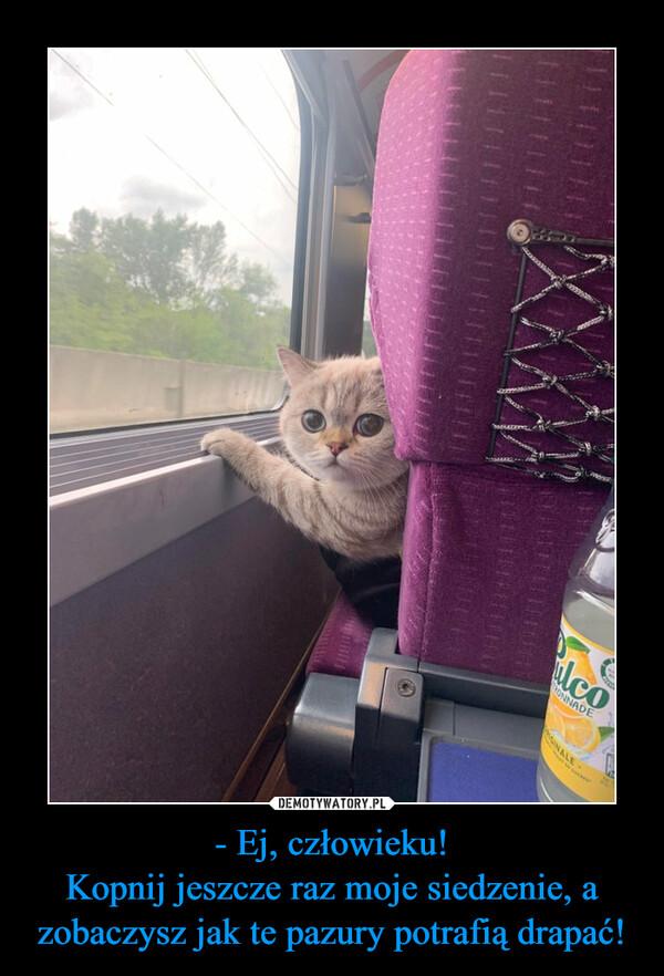 - Ej, człowieku!Kopnij jeszcze raz moje siedzenie, a zobaczysz jak te pazury potrafią drapać! –