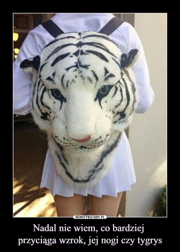 Nadal nie wiem, co bardziej przyciąga wzrok, jej nogi czy tygrys –