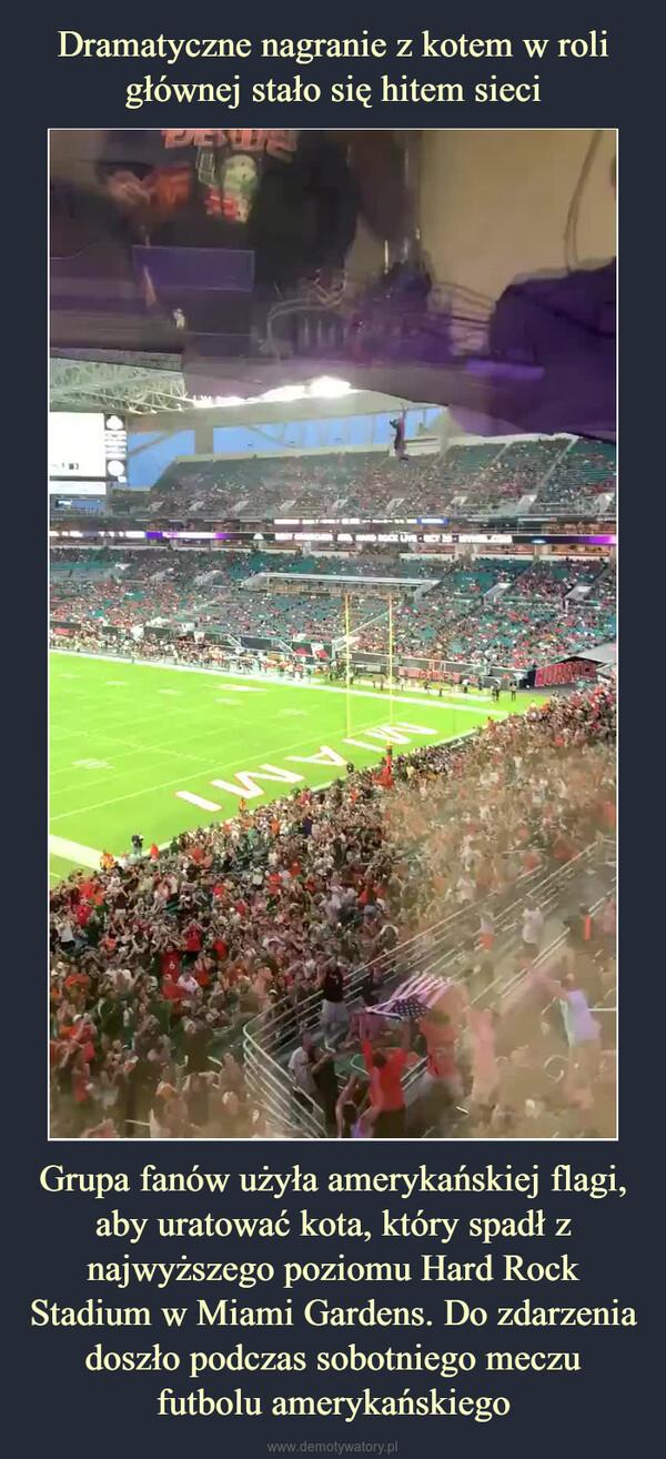Grupa fanów użyła amerykańskiej flagi, aby uratować kota, który spadł z najwyższego poziomu Hard Rock Stadium w Miami Gardens. Do zdarzenia doszło podczas sobotniego meczu futbolu amerykańskiego –