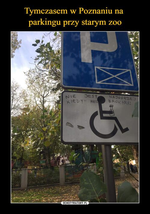 Tymczasem w Poznaniu na  parkingu przy starym zoo